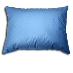 A Local Shining Moment ~ Pillowpacker Pillows