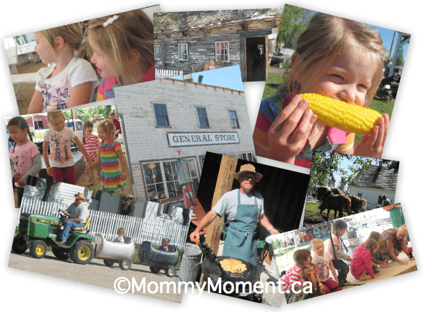 Wordless Wednesday ~ Fall on the Farm
