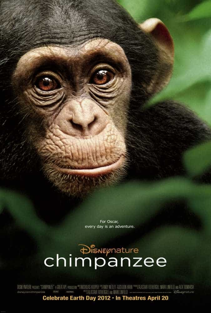 Check out CHIMPANZEE with Disneynature #giveaway