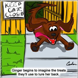 Pet Lover Cartoon