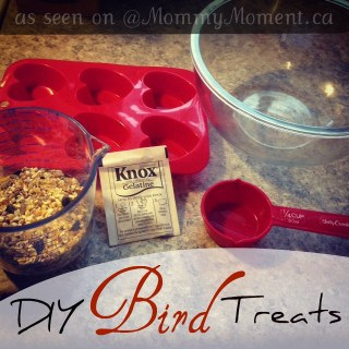 DIY Bird Treats