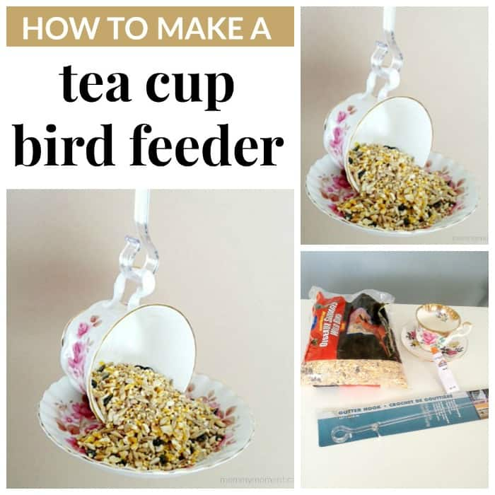 DIY tea cup bird feeder