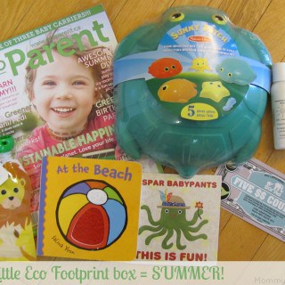 Summer Is Here with the Little Eco Footprint June Box