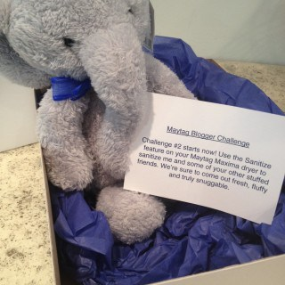 Sanitize an Elephant #MaytagBloggerChallenge
