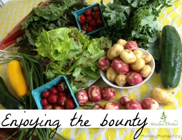 organic bounty