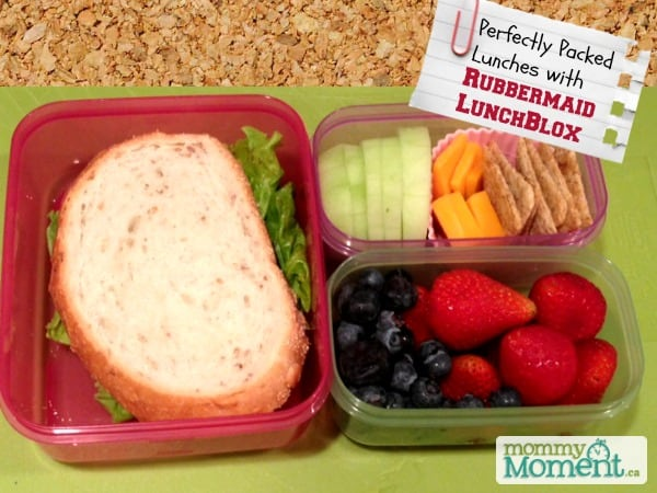 rubbermaid lunchblox giveaways ending