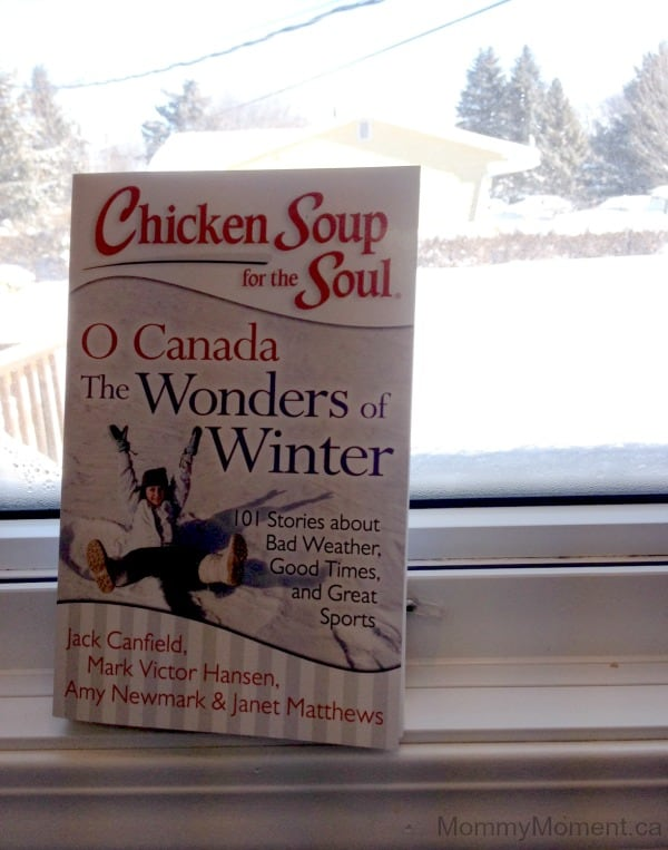 Chicken Soup Wonders of Winter