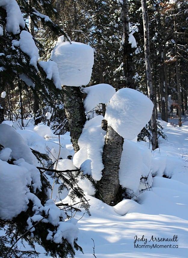 roasting-marshmallows-snow (MommyMoment.ca)