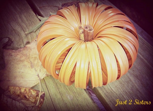 Pumpkin Jar Rings