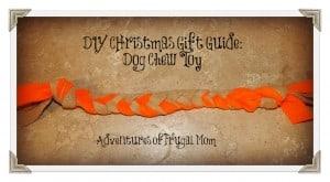 AFM-DIY-Dog-Chew-Toy-300x165
