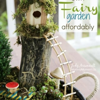 How to make a Fairy Garden affordably