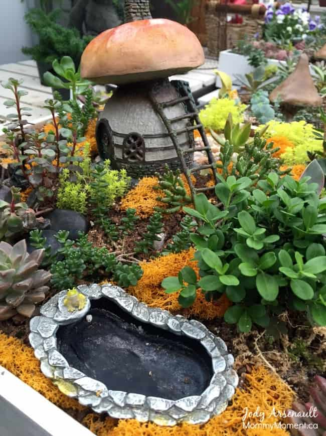 HOW TO MAKE A FAIRY GARDEN AFFORDABLY | Mommy Moment