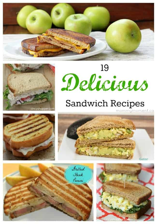 19 Sandwich Recipes That will make sandwiches seem exciting again!