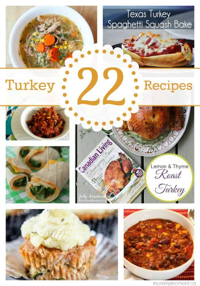 22 Turkey Recipes