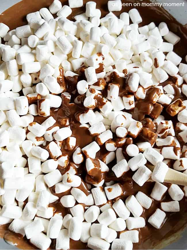 Chocolate Marshmallow