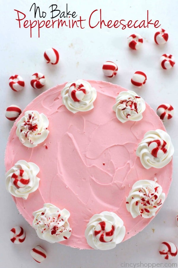 No-Bake-Peppermint-Cheesecake-2