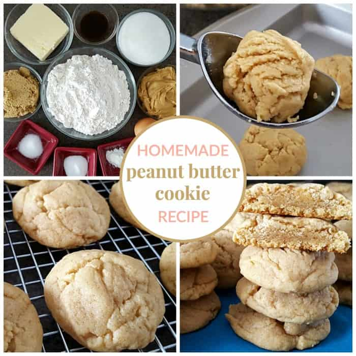 This homemade peanut butter cookie recipe results in delicious cookies with a slightly crispy outside and soft inside.