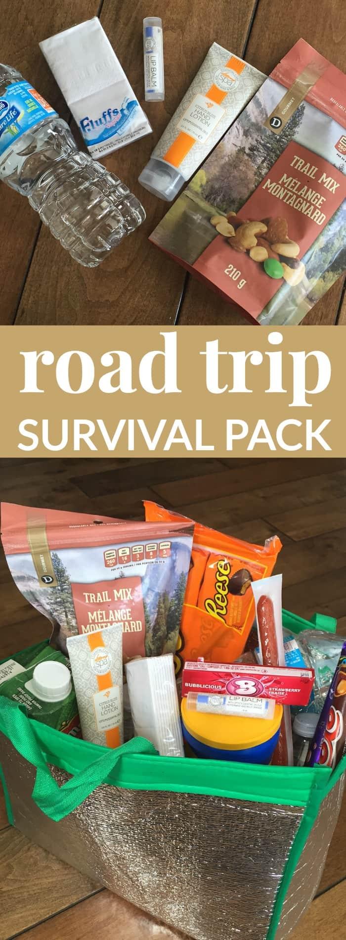 road-trip-survival-pack