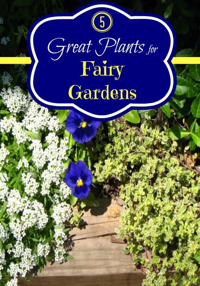 Inspiration On How To Make A Fairy Garden At Home Mommy