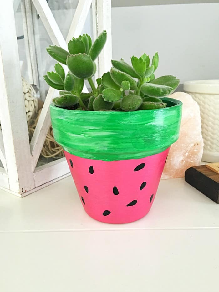 This adorable DIY HAND PAINTED watermelon flower pot is a cute addition to any indoor or outdoor garden space!