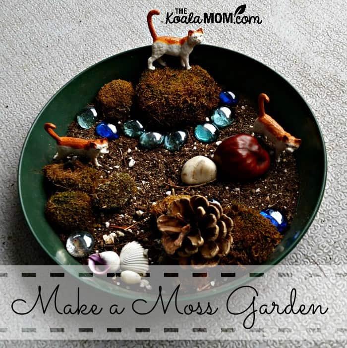 make-a-moss fairy garden