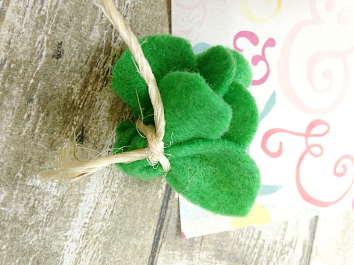 This DIY FELT SUCCULENTS CRAFT will add life to your home and is a great craft for kids.
