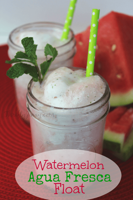 Watermelon-Agua-Fresca-Float-Recipe