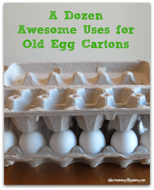 dozen uses for egg carton