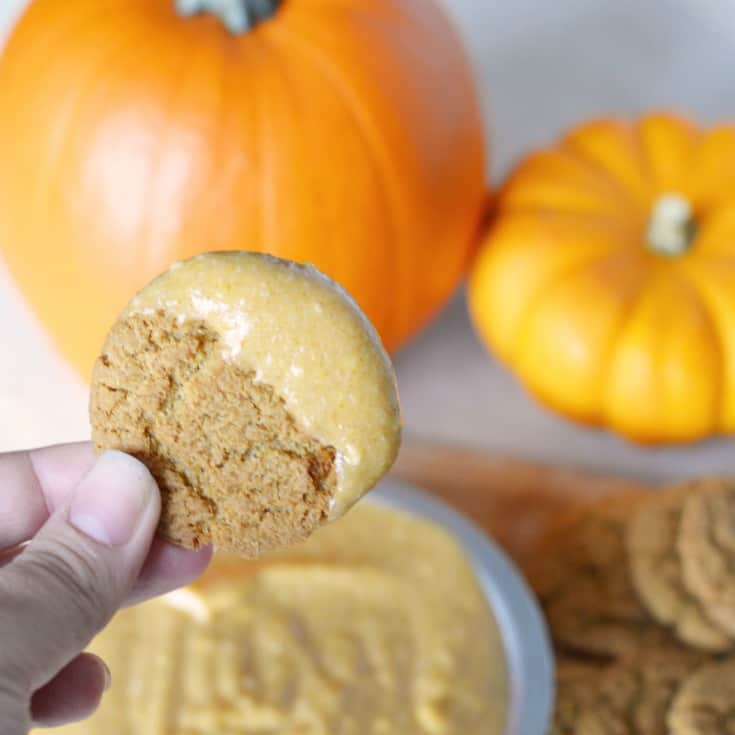 pumpkin pie dessert dip with cream cheese
