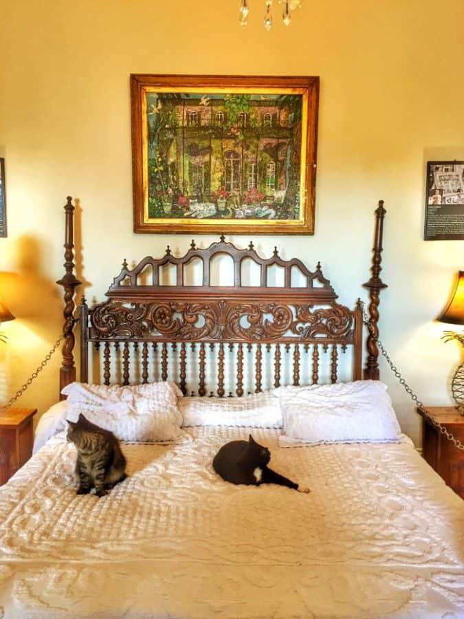 Ernest Hemingway Home Cats