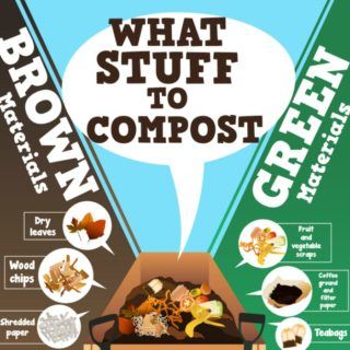 COMPOST THIS, NOT THAT – EASY COMPOSTING FOR BEGINNERS
