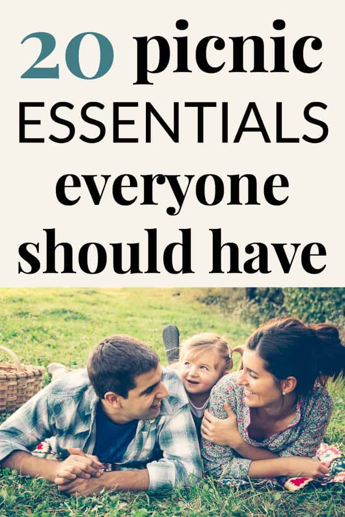 20 Picnic Essentials for the whole family