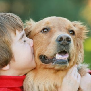 20 POSITIVE REASONS TO GET A FAMILY DOG