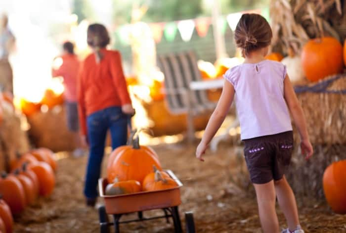 kids walking with wagon full of pumpkins