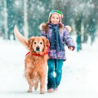 COLD WEATHER SAFETY TIPS FOR PET OWNERS
