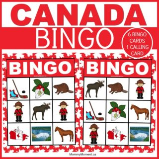 CANADIAN BINGO GAME