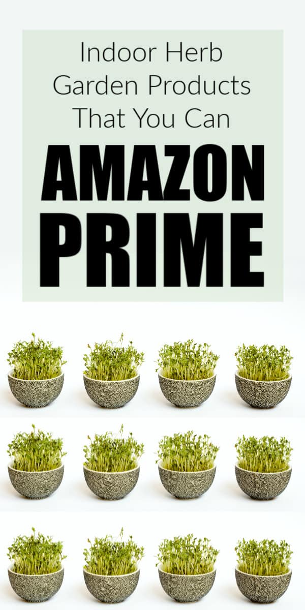 herb garden products