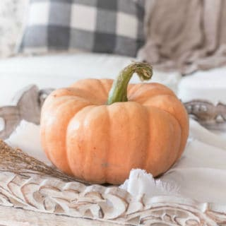 PUMPKIN CRAFT IDEAS FOR DECORATING