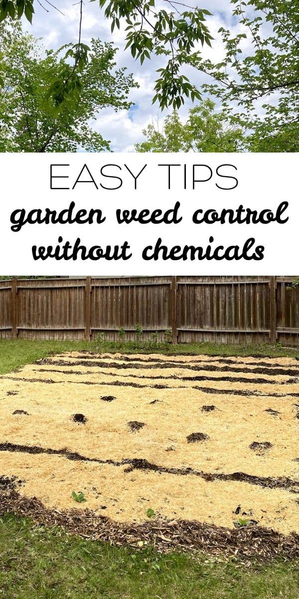 garden weed control